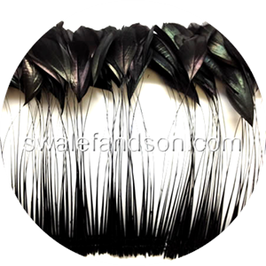 Stripped Rooster Feathers| Feathers in Bulk