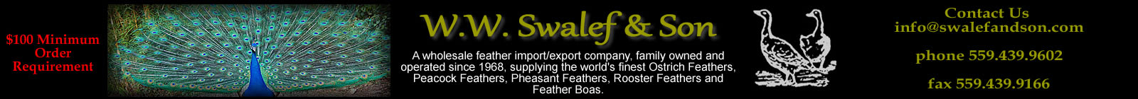Wholesale Feathers from W.W. Swalef and Son