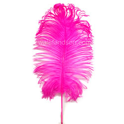 Ostrich Tail Feathers | Ostrich Feathers
