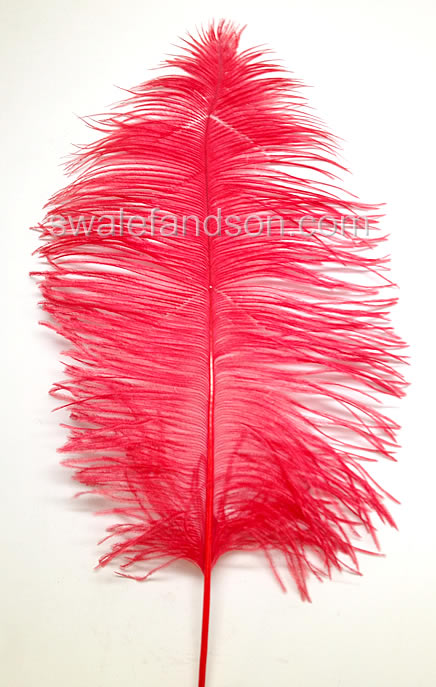 "Ostrich Tail Feathers 14-17"" Dyed Red  