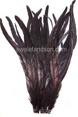 "20-22"" Dyed Rooster Tail Feathers"
