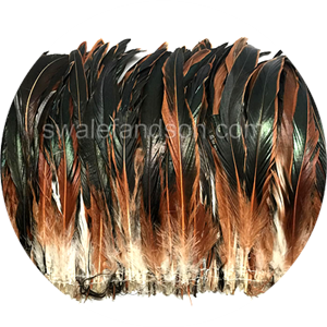 Natural Rooster Tail Feathers