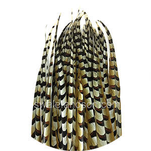 Reeves Pheasant Feathers | Wholesale Feathers