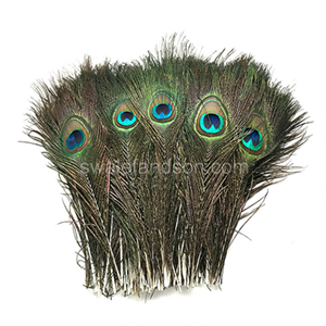 Peacock Tail Feathers | Wholesale Peacock Feathers