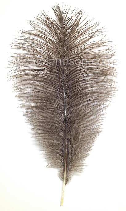 Natural Grey Ostrich Drabs | Natural Ostrich Feathers