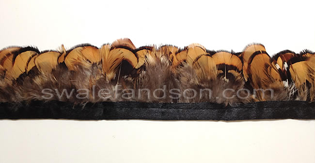 Reeves Pheasant Gold Plumage | Wholesale Feather Trim