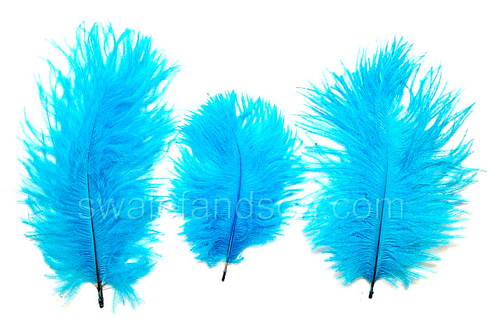 Turquoise Ostrich Belly Feathers | Ostrich Feathers Wholesale